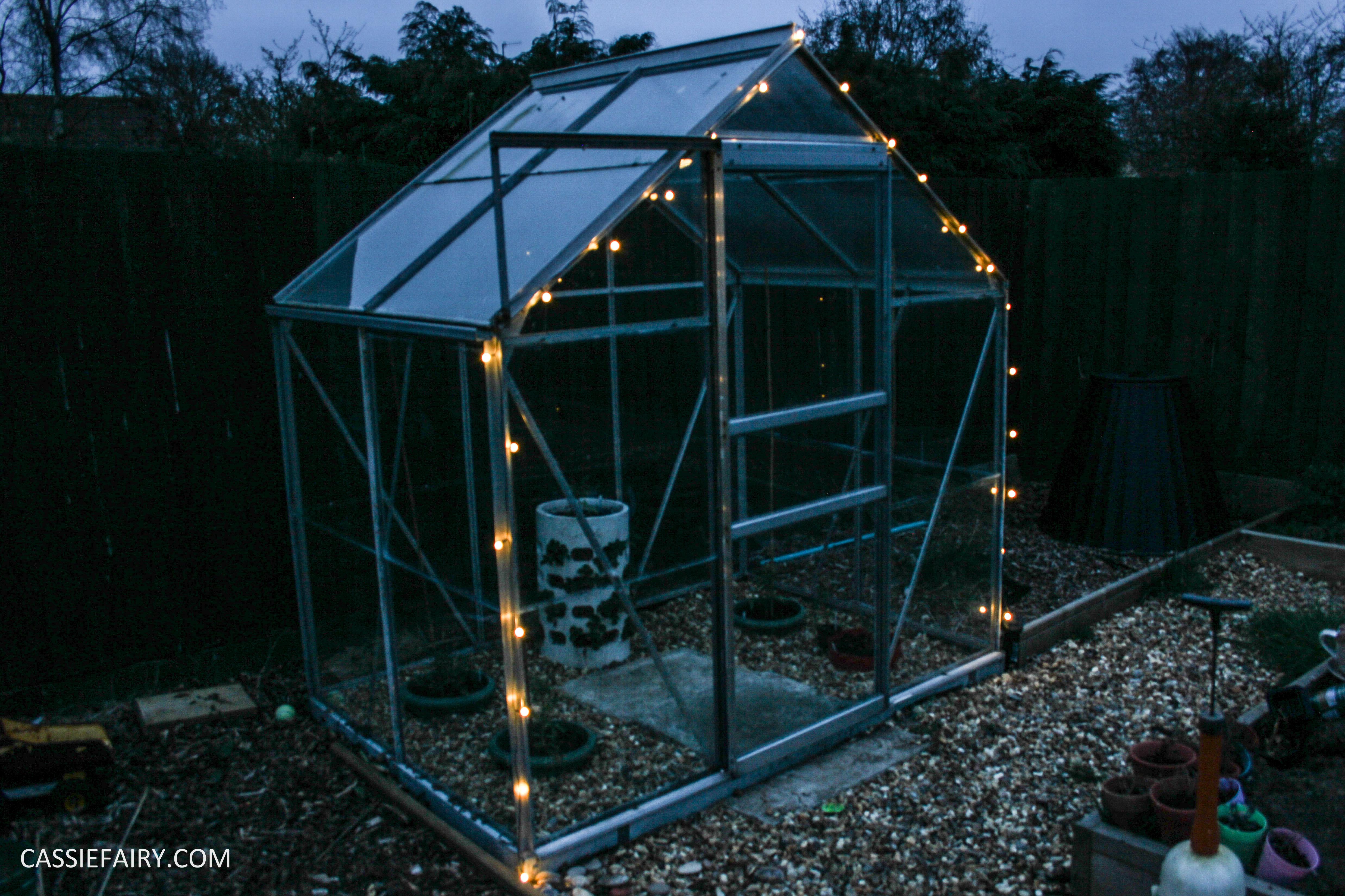 greenhouse spring makeover veggie patch-29