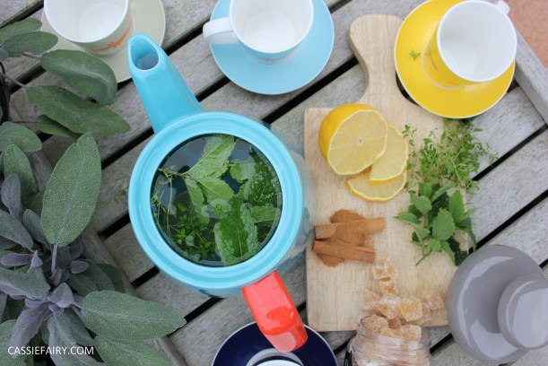 healthy moroccan mint ginger lemon herb infusion tea recipe-11