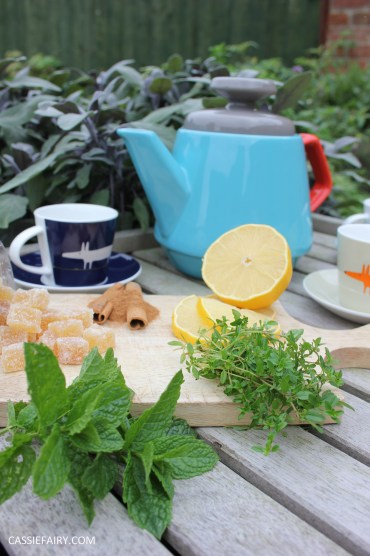 healthy moroccan mint ginger lemon herb infusion tea recipe-4