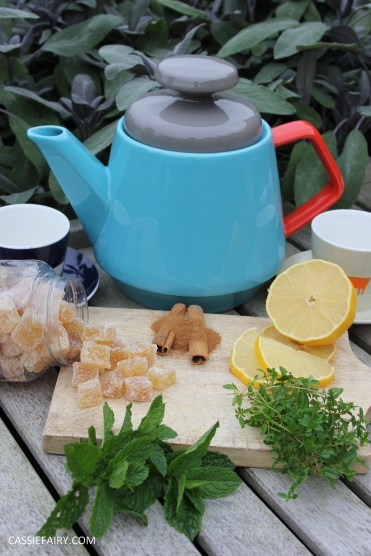 healthy moroccan mint ginger lemon herb infusion tea recipe-6