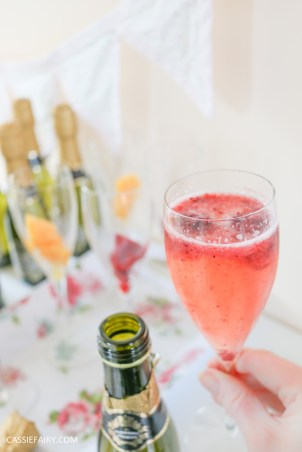 wedding hen party queens birthday celebration idea diy fruit puree ice cubes recipe-26