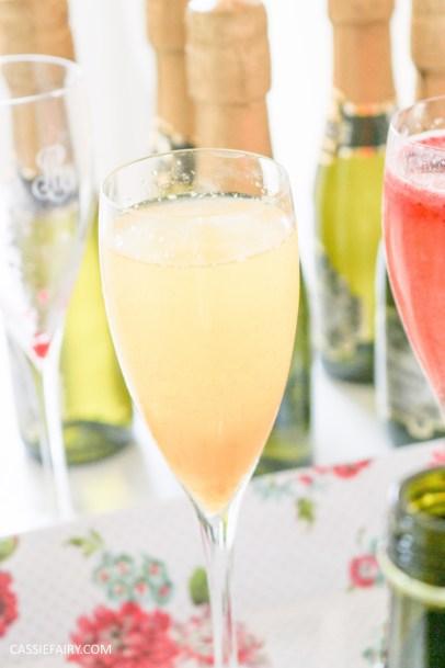 wedding hen party queens birthday celebration idea diy fruit puree ice cubes recipe-27