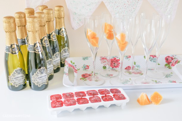 wedding hen party queens birthday celebration idea diy fruit puree ice cubes recipe-32