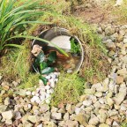 Creating a cheap & simple eco pond – No matter what size your garden