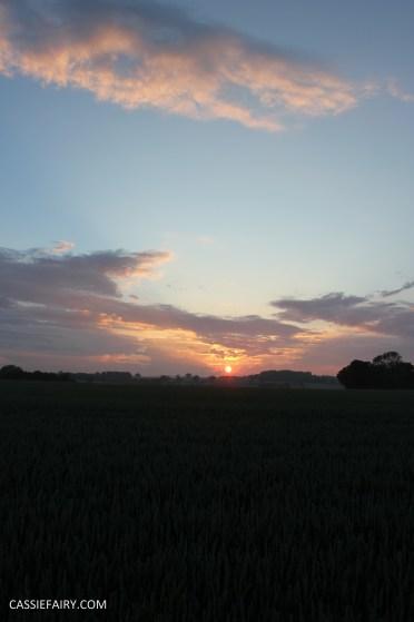 photography sunset golden hour photo sun silhouette-14