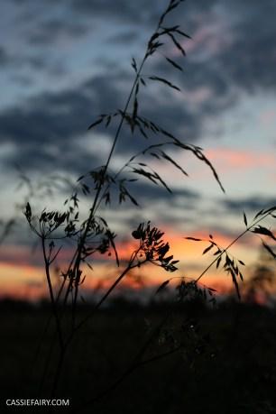 photography sunset golden hour photo sun silhouette-9