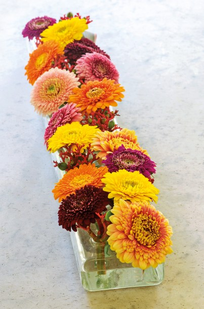 Germinis and gerberas - photo credit to Polly Eltes