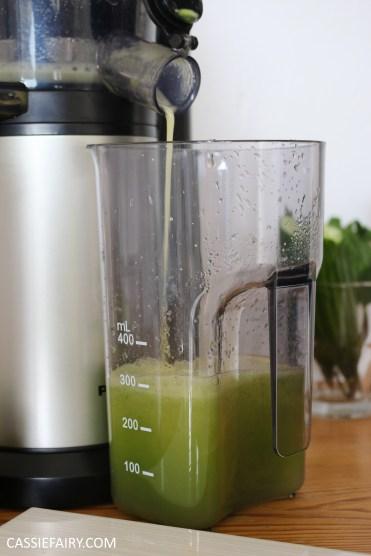 juicing herbs - juice recipe apple pear cucumber mint lime -10