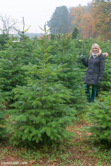 buying local british christmas tree blackthorpe barn suffolk-11