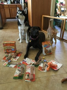 @nylabone Nylabone manufactures #dog bones, chews, treats, and toys designed to meet the chewing needs of any dog - no matter the breed, size or chew strength.