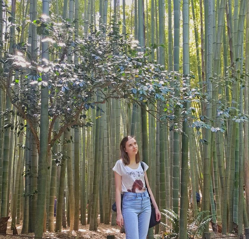 kamakura bamboo gardwn