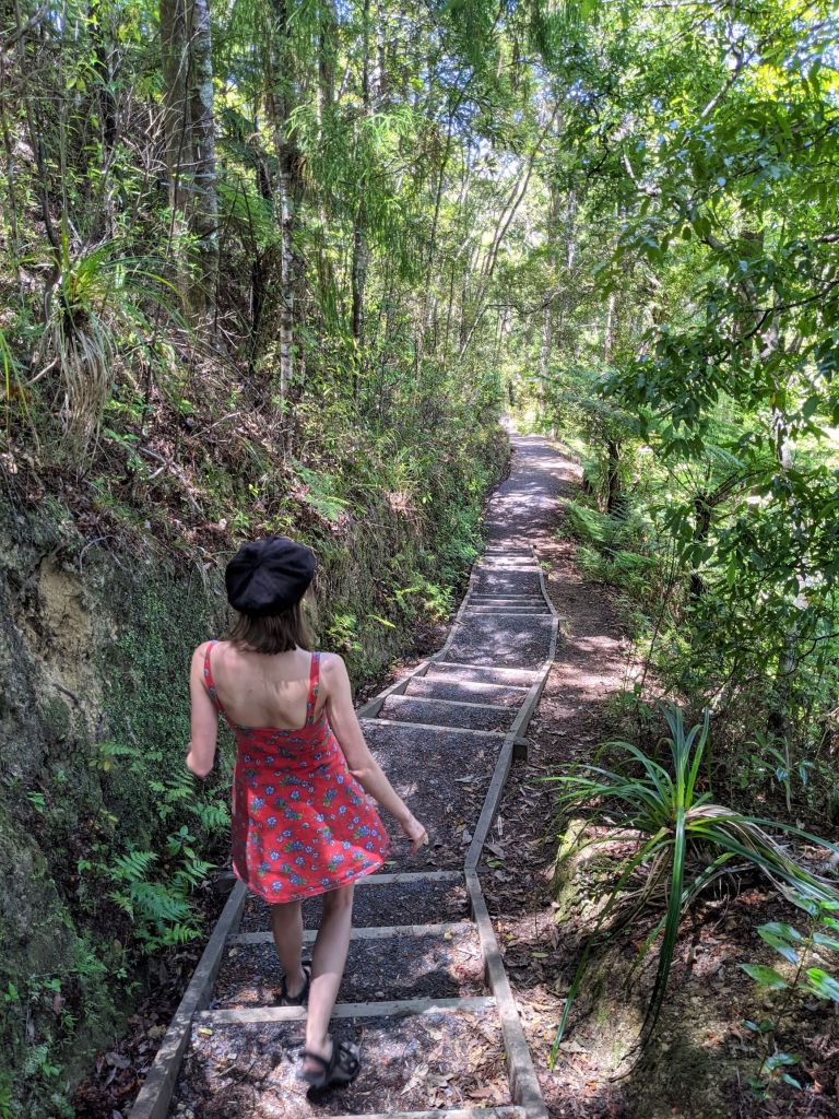 Best walks in the Bay of Islands
