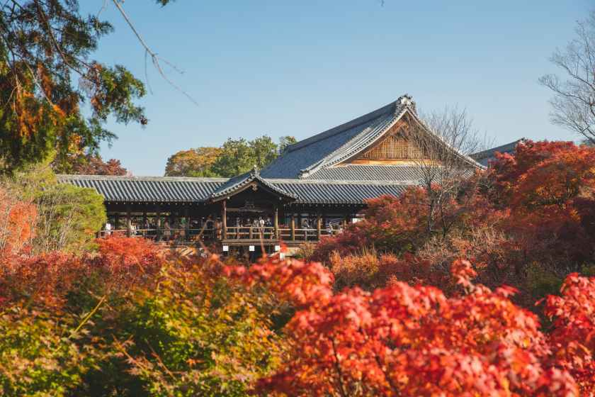 traditional asian temple near trees in autumn