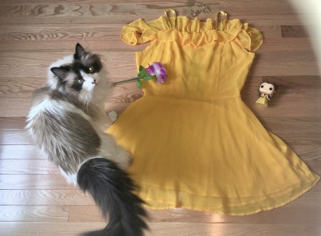 beauty and the beast, belle, cassie wears what, disney, cassiewearswhat.com
