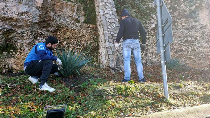 Colle San Magno – Nuove piante in paese donate da un privato cittadino