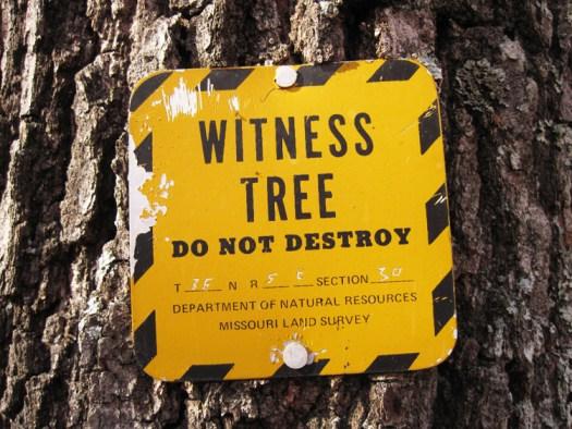 missouri witness tree sign
