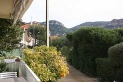 terrasse orangers/ terrace orange trees