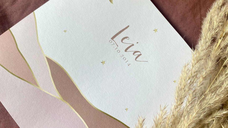 geboortekaartje ontwerpen kaartje2go geboorteaankondiging