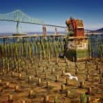 bridge and the remains of a wharf at Oregon coast
