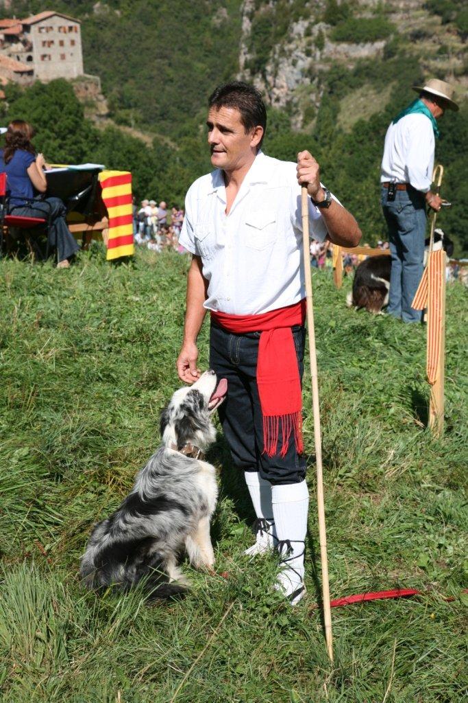 foto-concurs-gossos-datura-8
