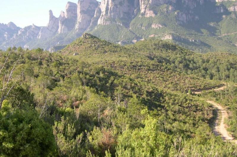"""Castellbell i el Vilar al projecte """" Life Montserrat""""  de la Diputació de Barcelona"""