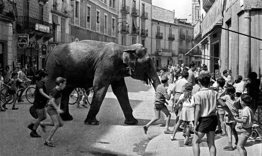 L'Arxiu Municipal de Súria incorpora el fons fotogràfic Vila-Vers