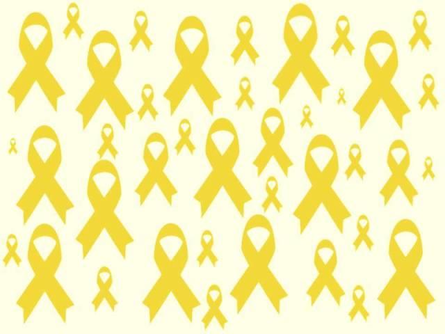llaços grocs