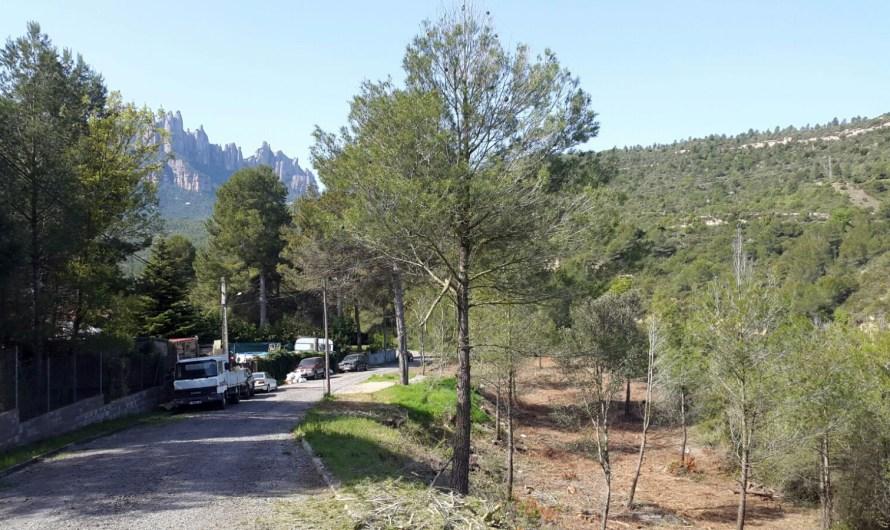 Delimiten noves franges de protecció d'incendis forestals a la urbanització de Can Prat a Castellbell i el Vilar