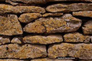 Drystone wall with lichen