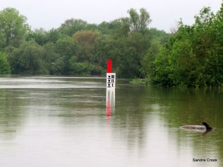 Water levels when we finally decided to risk continuing