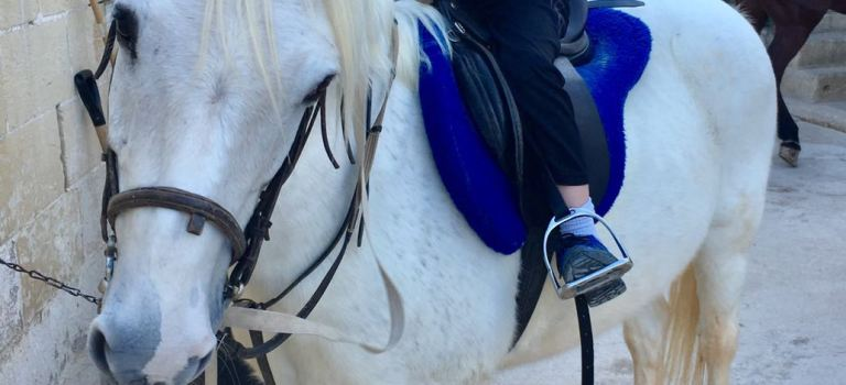 Malta – Boating and Horseback Riding