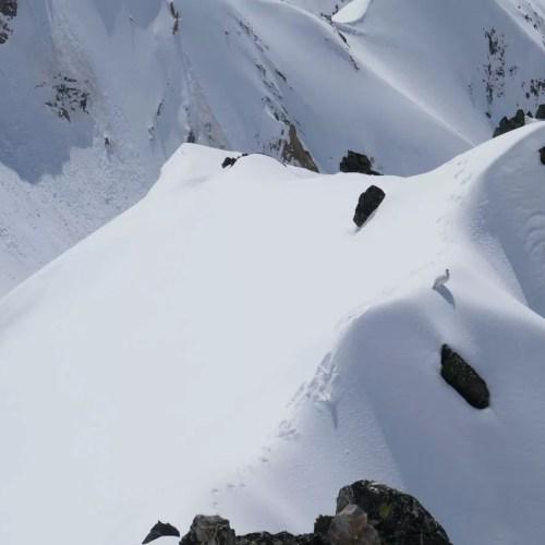 Esquí de montaña. Perdiz nival