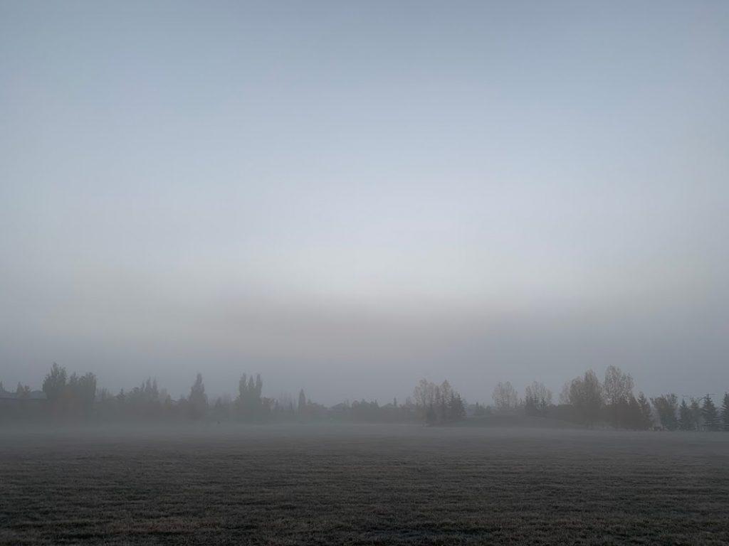 Autumn fog on a suburban park field.