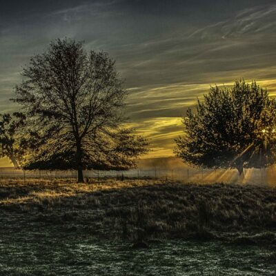 Andy Indrans_Winter Morning Sunrise