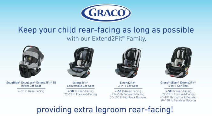 Reasons to Rear-Face Your Child