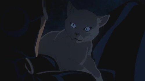 Catwoman-I'm You Savior, Kitty!