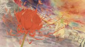 Joker-A Beautiful Blossom!