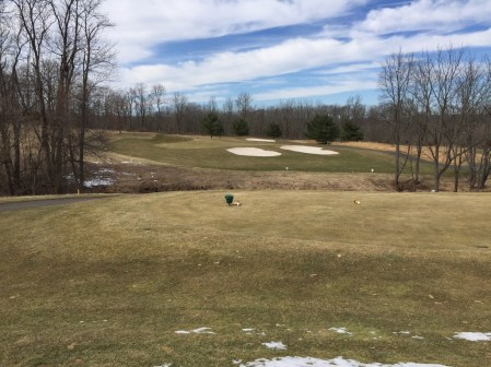 Heron Glen 12th hole is a shot par 3 with slippery green that slopes to the front of the green.