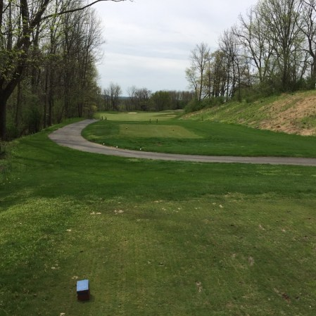 View from 7th tee box down this dog leg right.