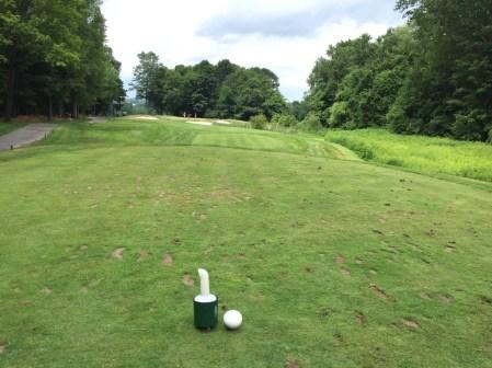 Par 3 7th hole of Fairway course.