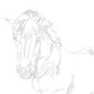 Lauras Pony_Sketch_1_19