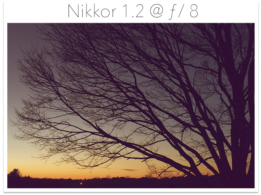Nikkor 1.2 at 8