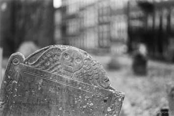 film ferrania p30 samples boston james-16