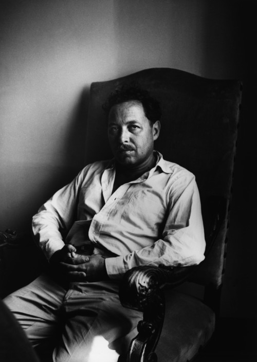 US playwright and author Tennessee WILLIAMS in his study. Ara Güler / Magnum Photos