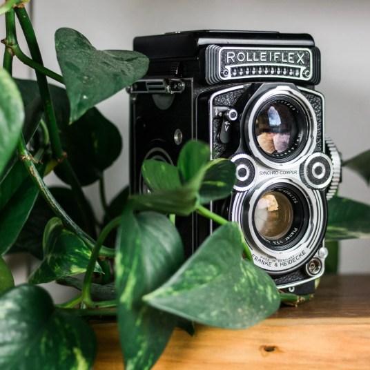 cory lens 03
