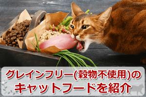 グレインフリー(穀物不使用)のキャットフードのおすすめランキング【5選】