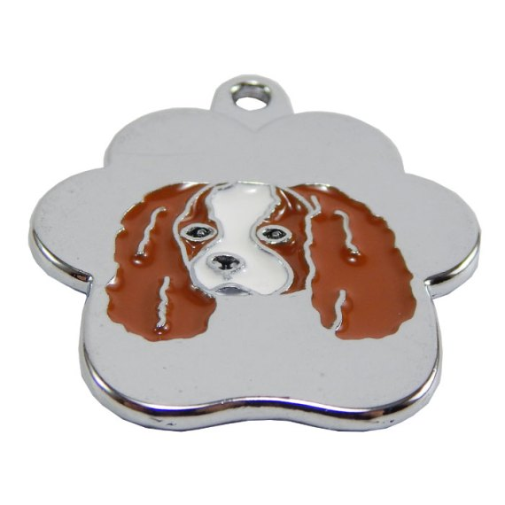 placa de identificacion para perros