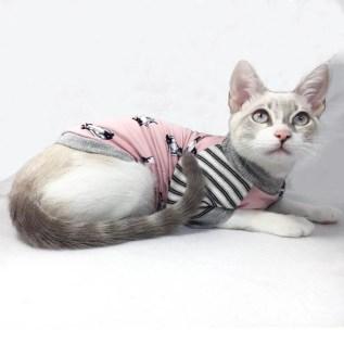 ropa para gatos lima peru