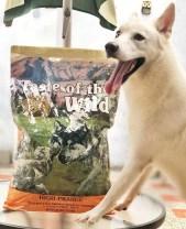 perro comiento taste of the wild comida para perros praire peru