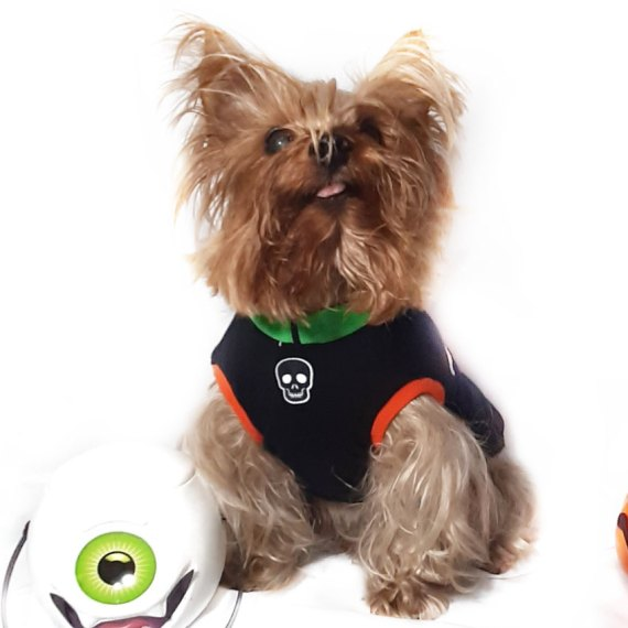 polo ropa para perro temática halloween en lima peru miraflores